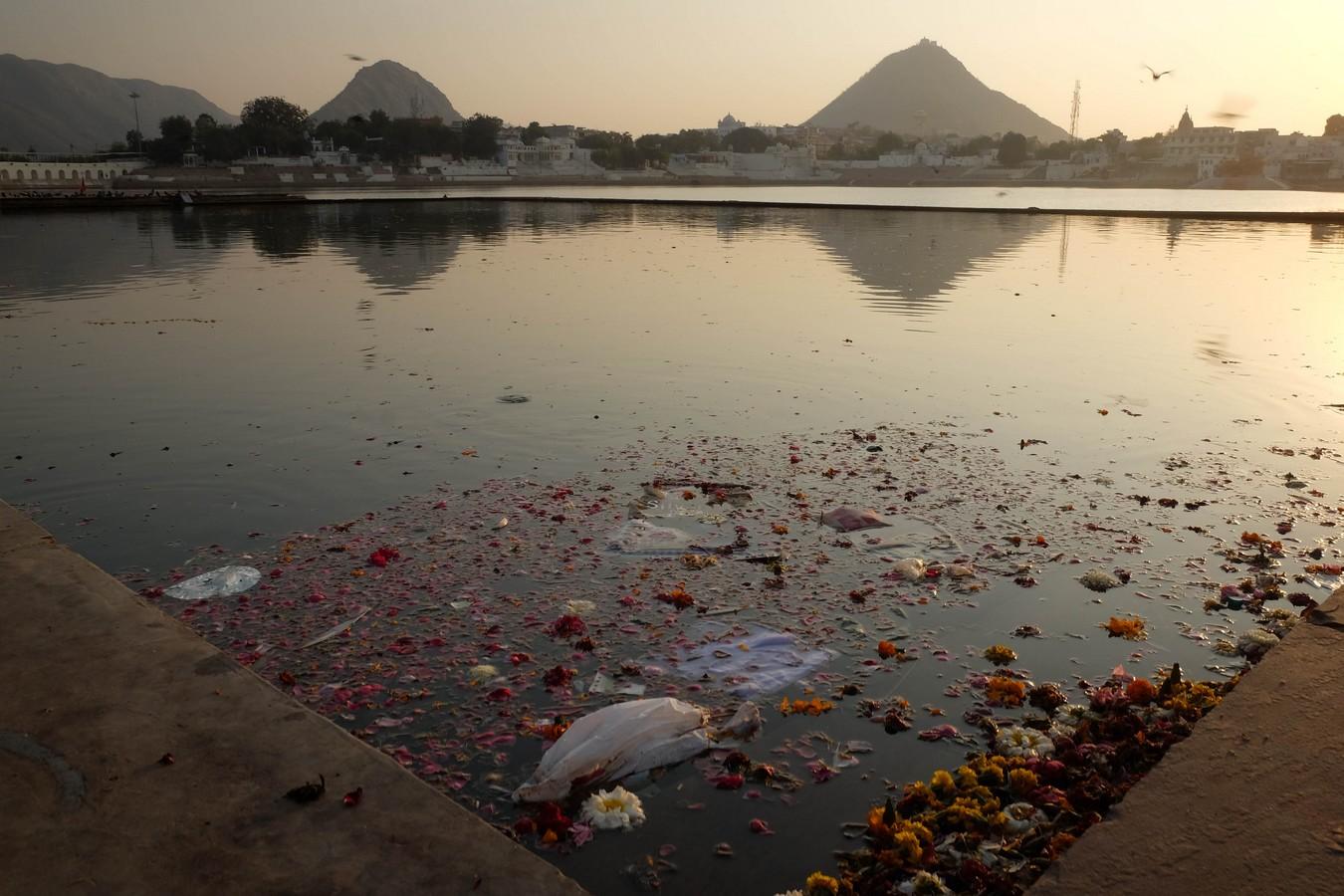 Les offrandes du lac de Pushkar