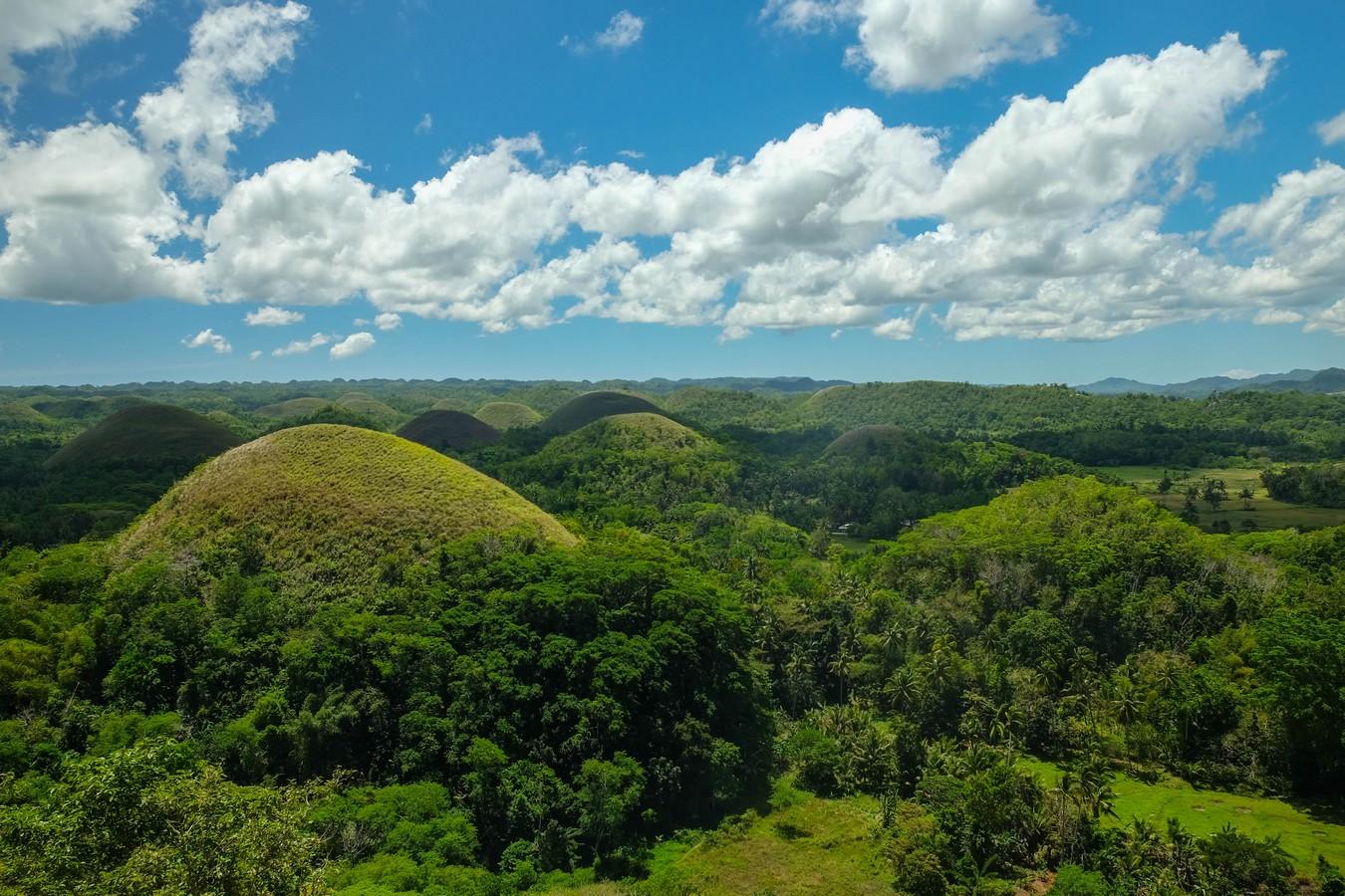 Vue des Chocolate Hills sur l'île de Bohol aux Philippines.