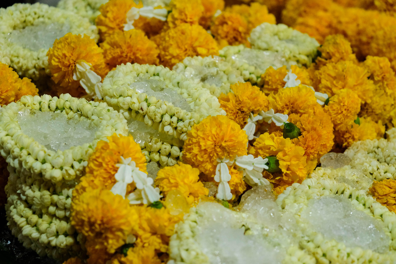 Fleurs conservées dans de la glace à Bangkok