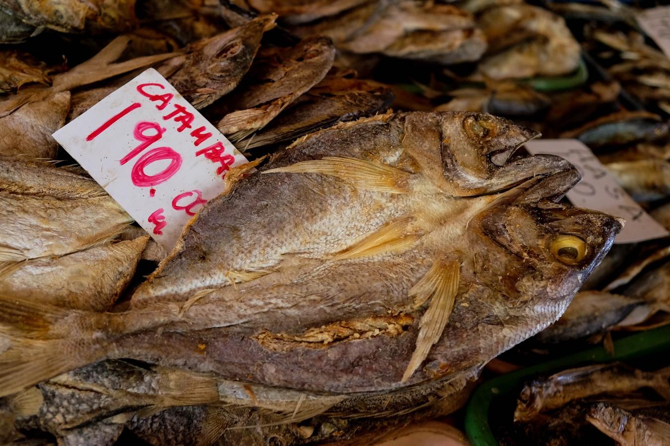 Poissons séchés sur un marché aux Philippines.