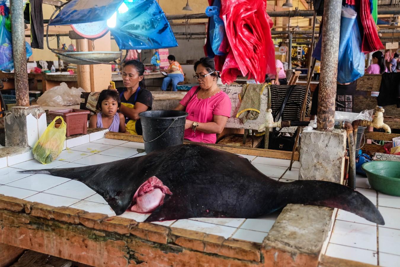Photo d'une raie vendue sur un marché aux poissons Philippin.