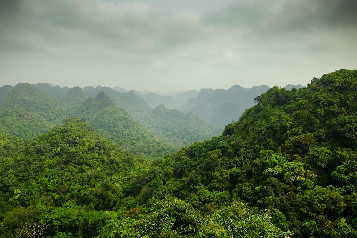 Jurassic National Park à Cat Ba au Vietnam