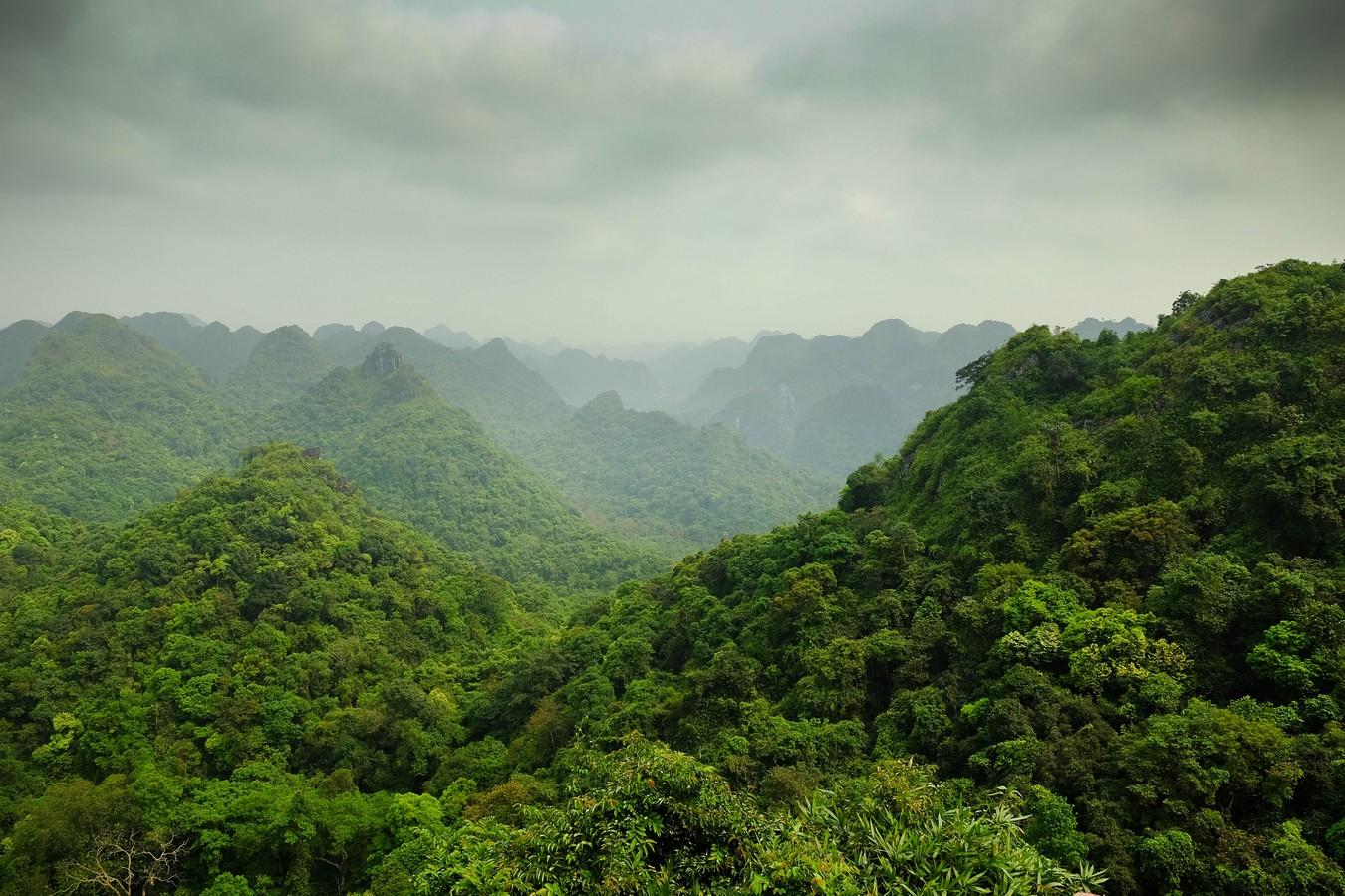 Jurassic National Park à Cat Ba au Vietnam