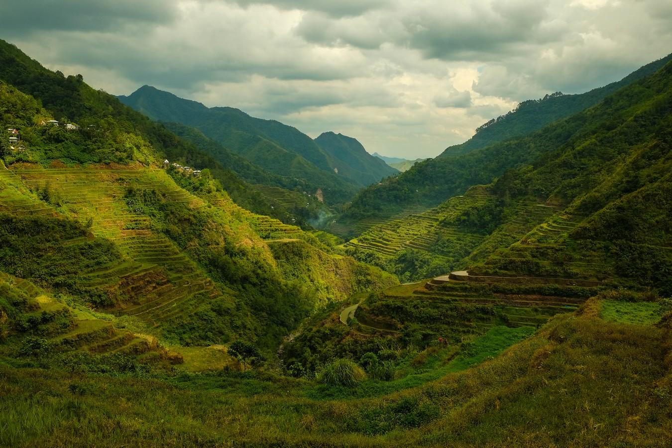 Le panorama grandiose qui vous attend lors d'un trek dans les rizières de Banaue.