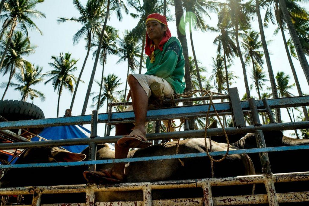 Marché de Malatapay aux Philippines