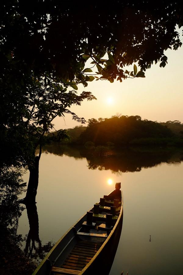 Lever de soleil sur la réserve de Cuyabeno en Amazonie en Equateur.