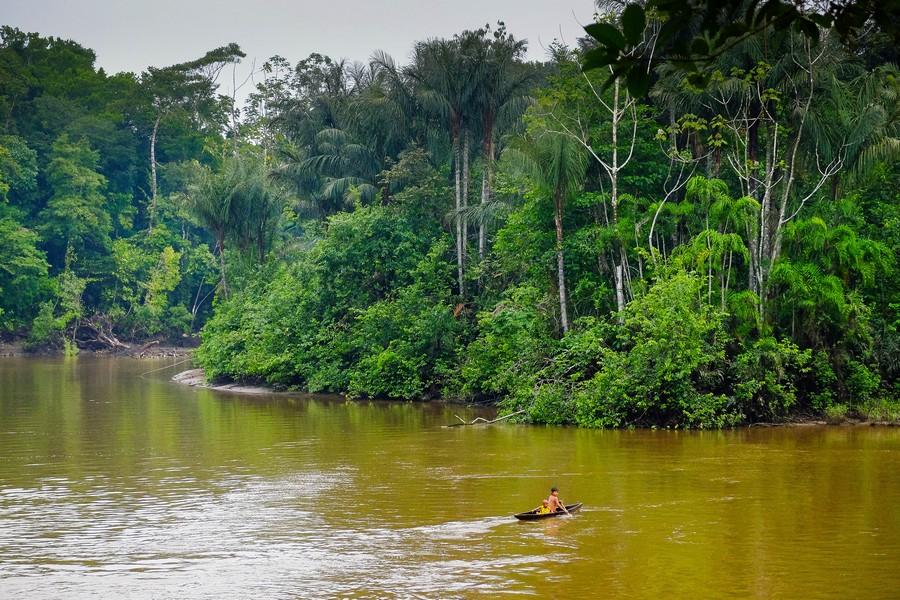 Enfant dans une pirogue dans la réserve de Cuyabeno en Amazonie en Equateur.