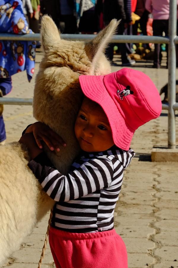 ecuador-little-girl-llama