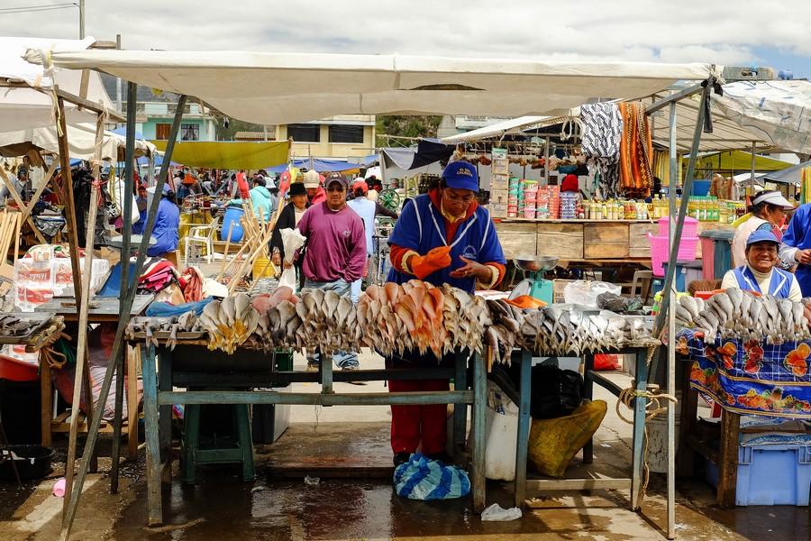 marche-poissons-saquisili-equateur