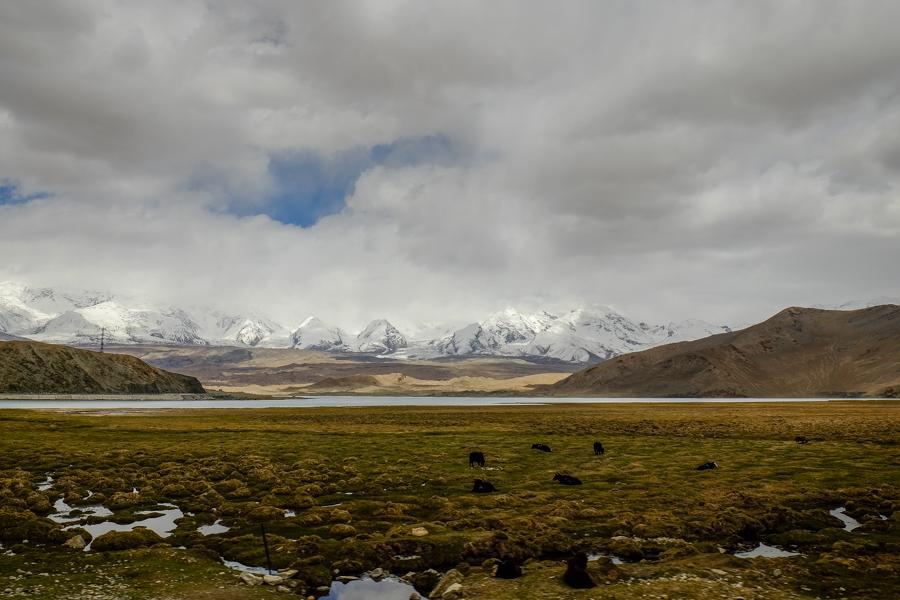 Les steppes de la Karakoram Highway sur la route de la Soie en Chine.
