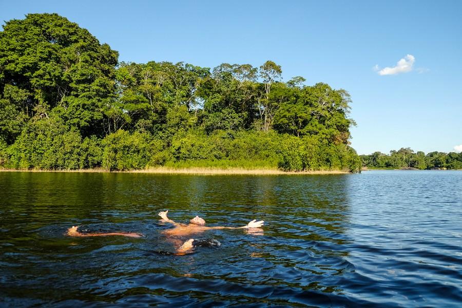 Le dauphin rose de l'Amazonie. Puerto Nariño, Colombie.