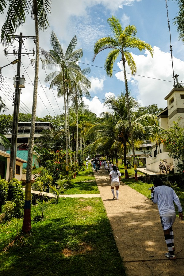 Le chemin de l'école de Puerto Nariño, un paradis à quelques heures de Leticia en Colombie.