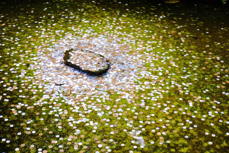 Fontaine à pièces au pavillon d'argent, Kyoto, Japon.