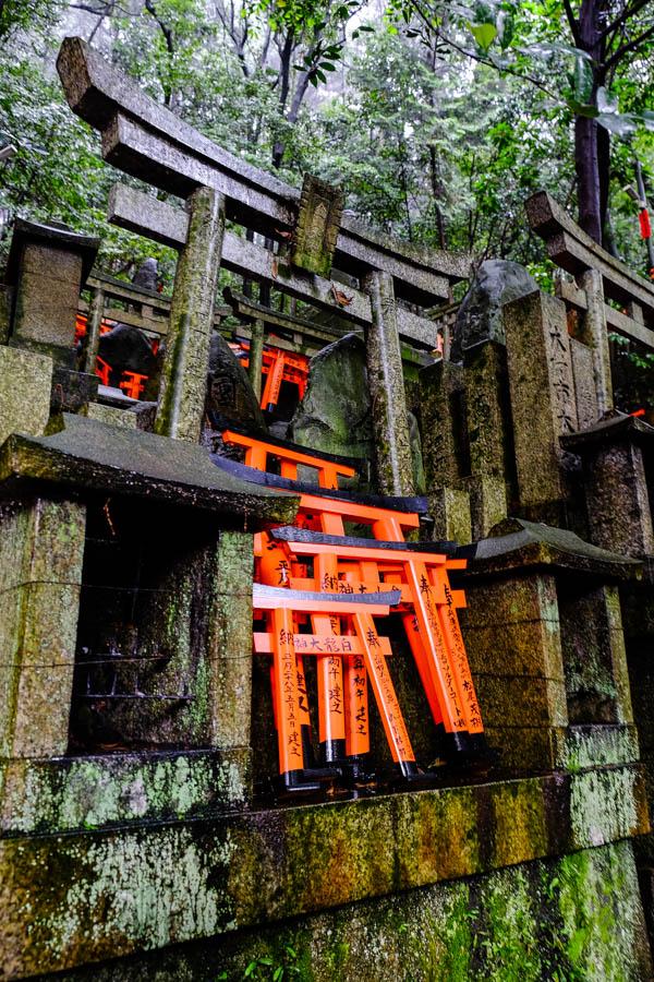 Torii de bois et de pierre, Fushimi Inari, Kyoto, Japon.