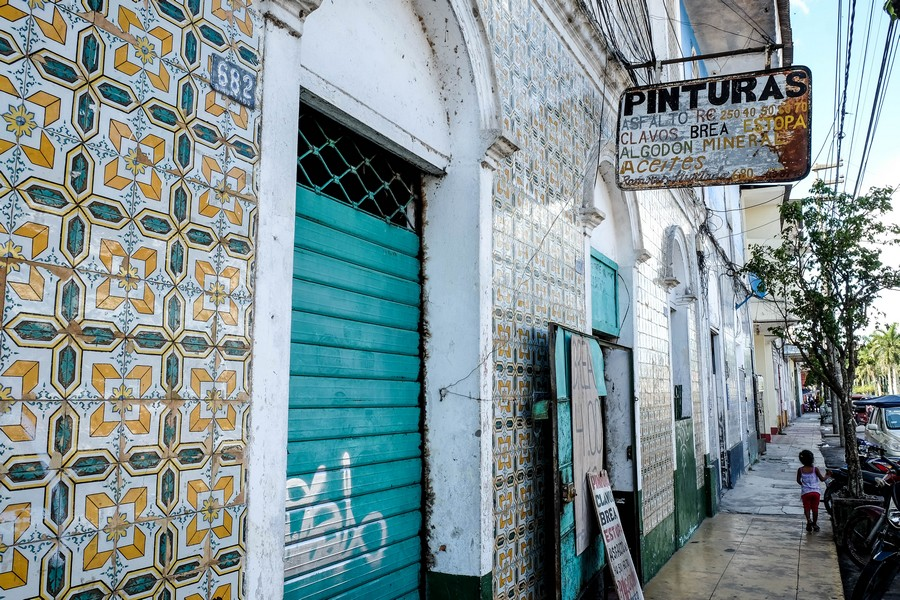 Les azulejos sont nombreux à Iquitos.