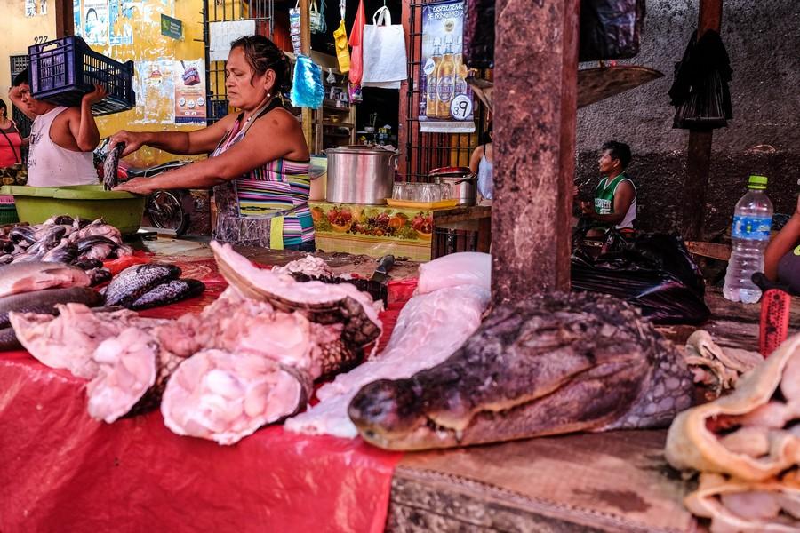 Du crocodile au menu du marché de Belen, à Iquitos
