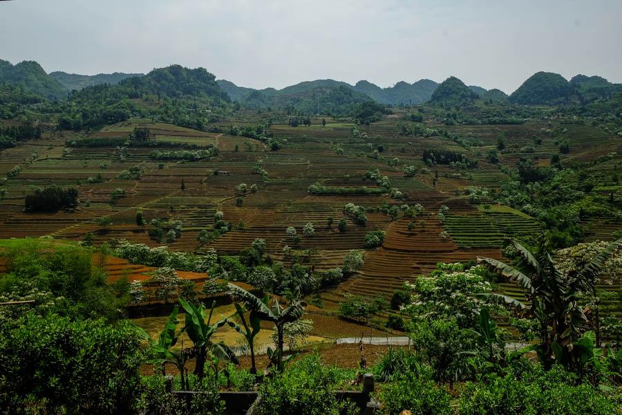 Paysage autour de Bac Ha, Nord du Vietnam.