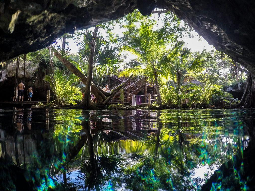 Reflet dans le Gran Cenote de Tulum, Yucatan, Mexique.