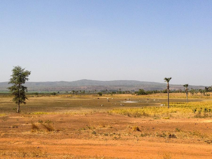Paysage de savane près de Banfora, Burkina Faso.