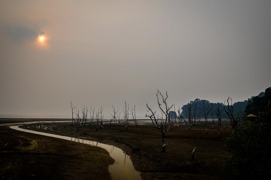 Coucher de soleil dans le parc de Bako, à Bornéo, Malaisie.