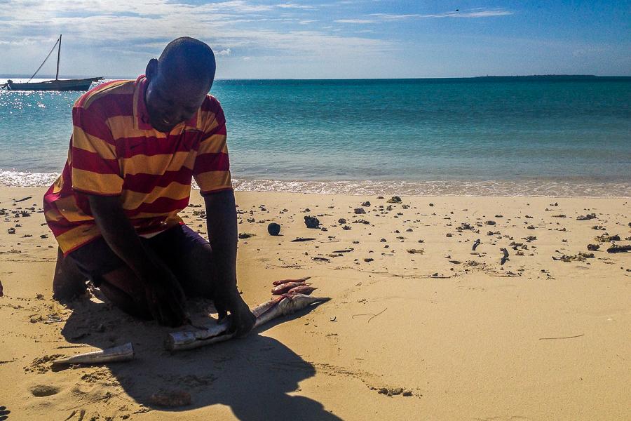Le capitaine découpant le poisson sur la plage de Matemo, archipel des Quirimbas, Mozambique.