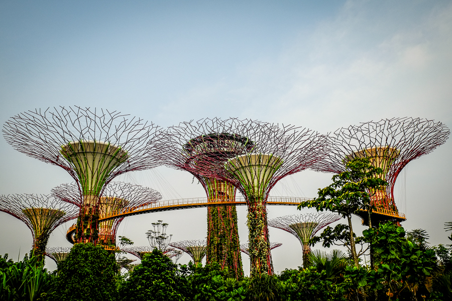 Gardens by the bay, le jardin de Singapour.