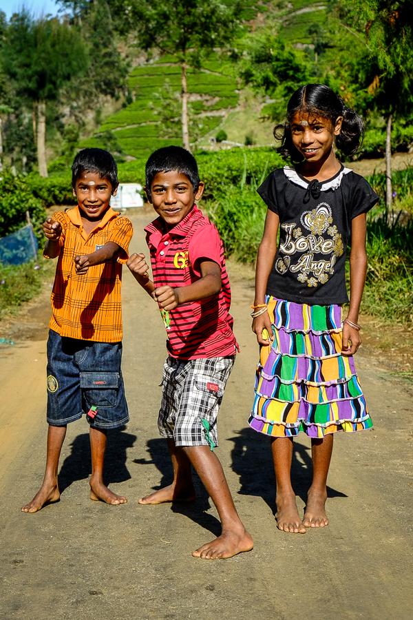Portrait d'enfants au Sri Lanka.