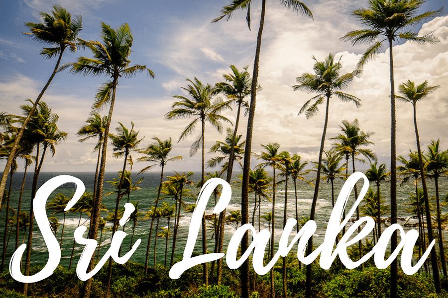 Toutes nos photos du Sri Lanka !