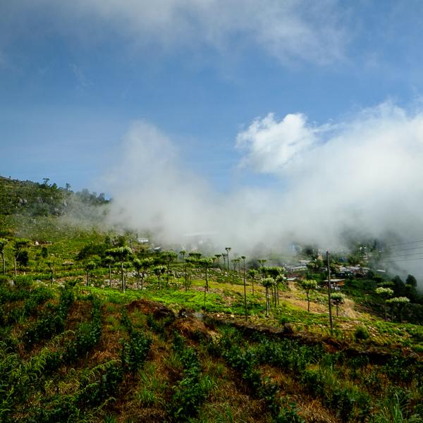 Nuages dans la vallée d'Haputale au Sri Lanka.
