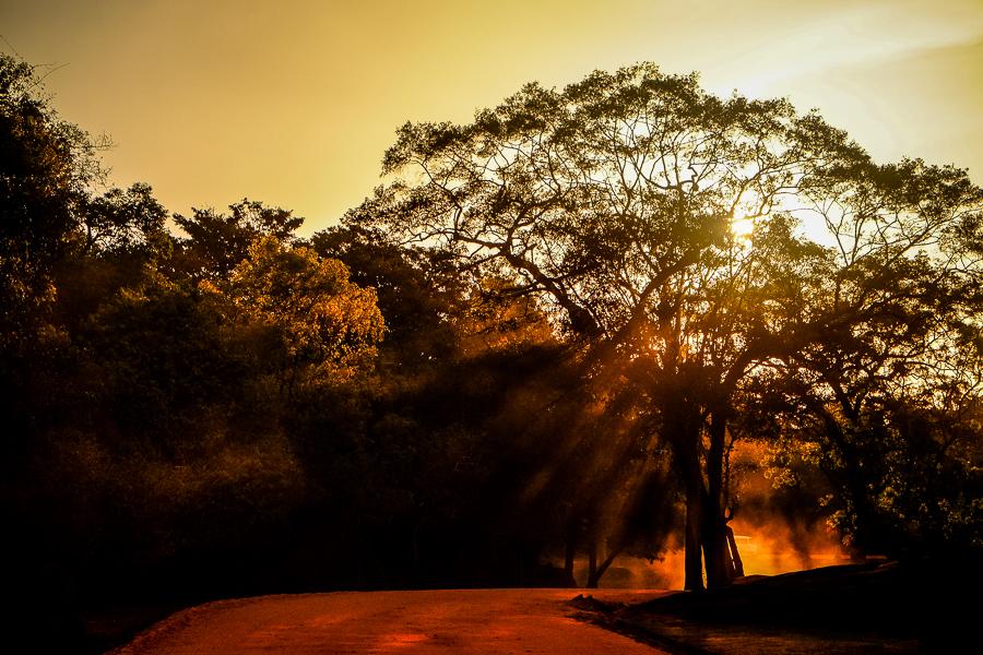 Soleil couchant à Sigiriya au Sri Lanka.
