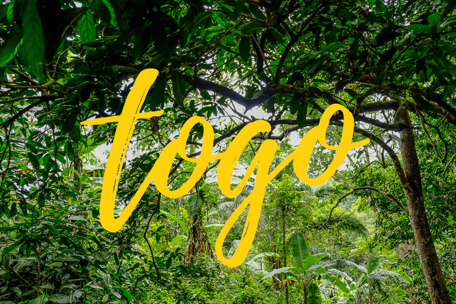 Tous nos articles sur le Togo